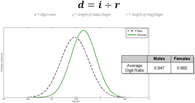 digit ratios