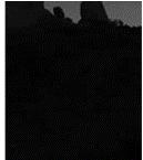 U5 [www.imagesplitter.net]-4-3